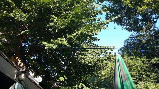 Foto van een groen uitzicht